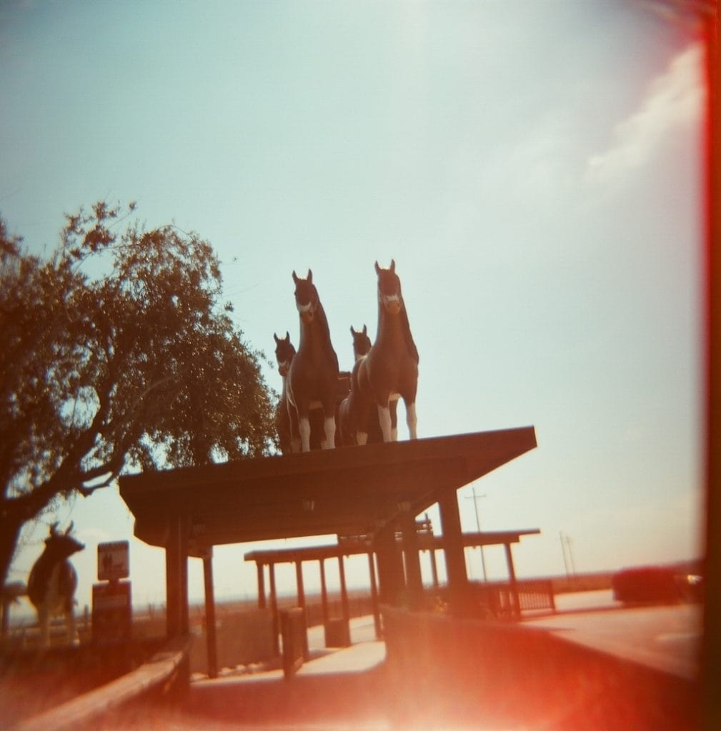 holga, film photography