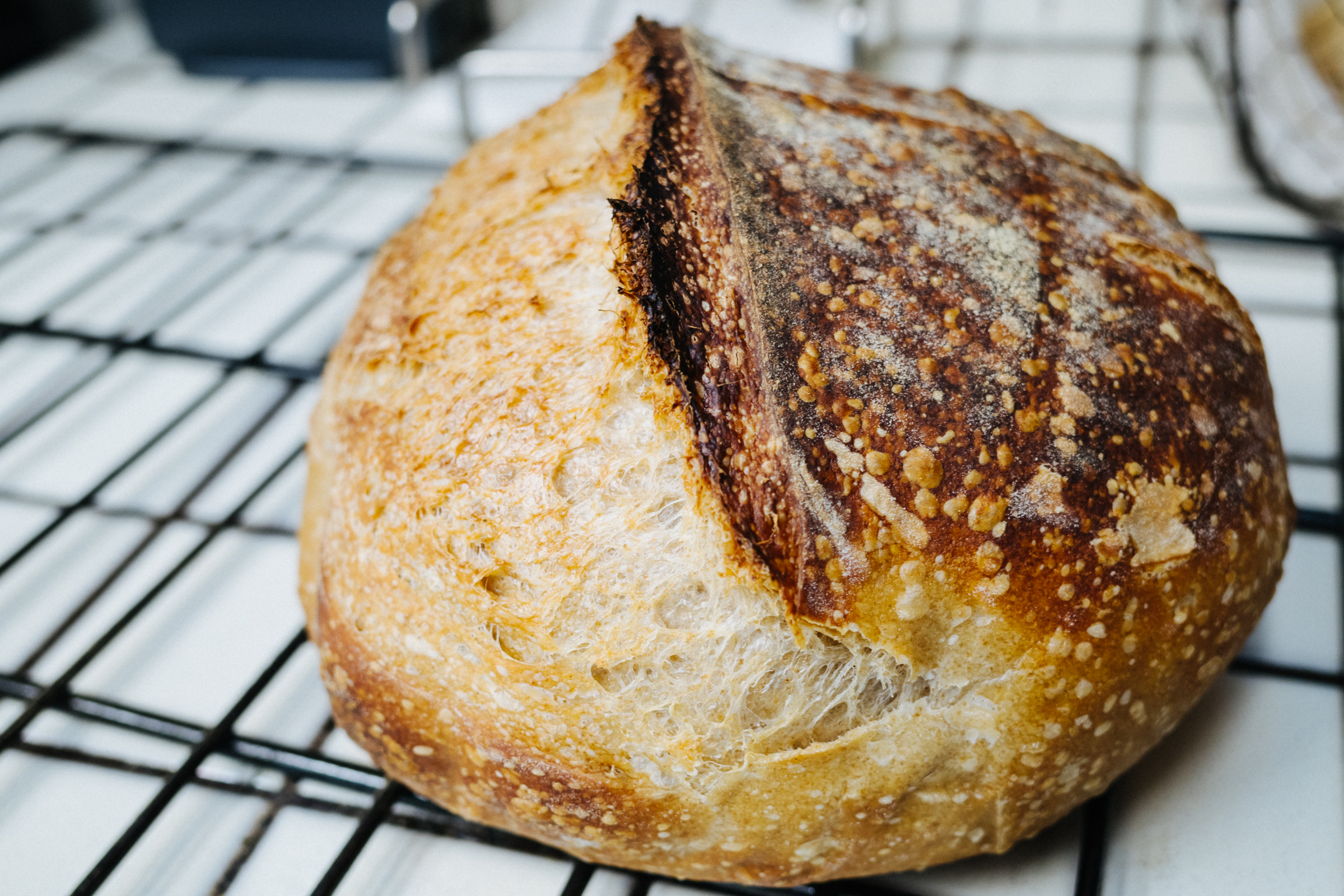 sourdough homemande bread